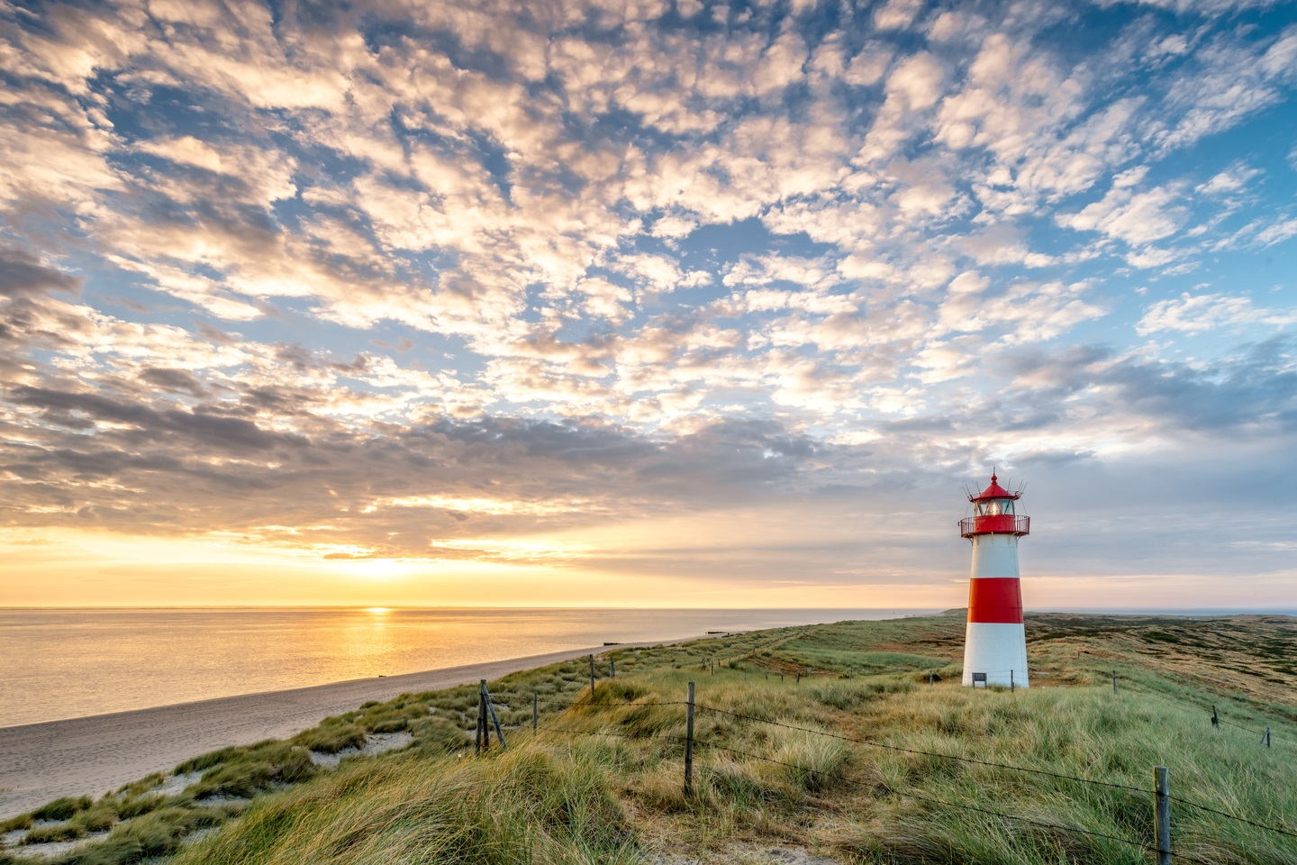 Discover Sylt1
