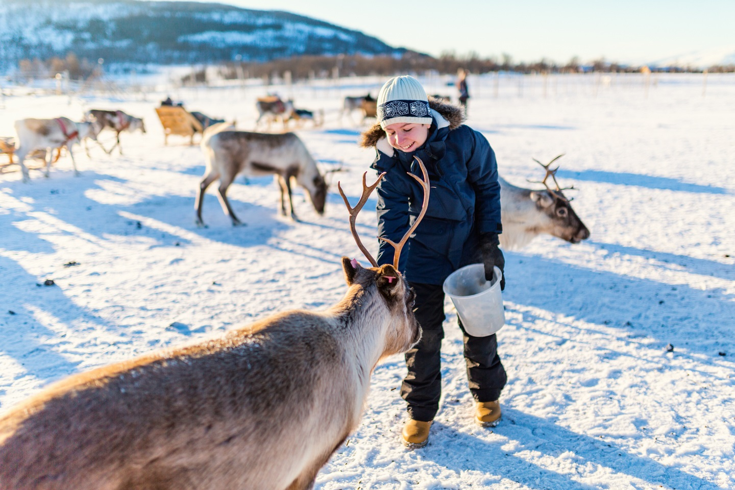 The Most Festive Places In Europe Lapland
